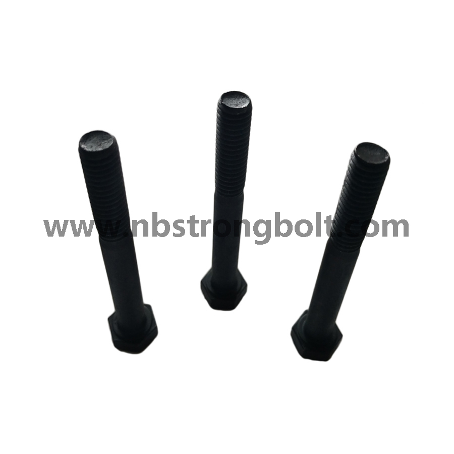 Hex Bolts Cl. 10.9 with Hole Black/China hex bolts manufacturer,China hex bolts factory,China astm bolts,DIN931,din933,China din931,China din933