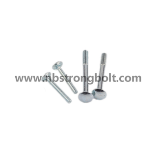 Round Head Square Neck Bolts, Mushroom Head Square Neck Bolts DIN603 Gr. 4.8 M8X25/China carriage bolt factory,China carriage bolt manufacturer