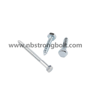 Hexgon Head Lag Screw with Zp/China wood screw factory,China screw manufacturer,DIN571