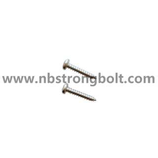 DIN7981 Pan Head Tapping Screw With Cross Recessed SS304 3.5X19